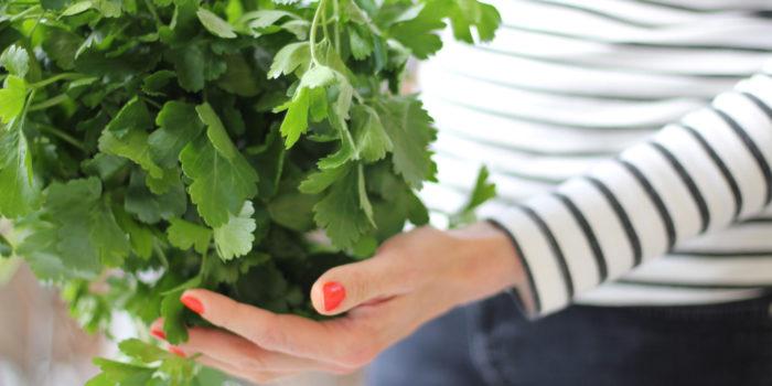 Petersilie frisch vom Acker für die Grünen Smoothies von GREENADAYS