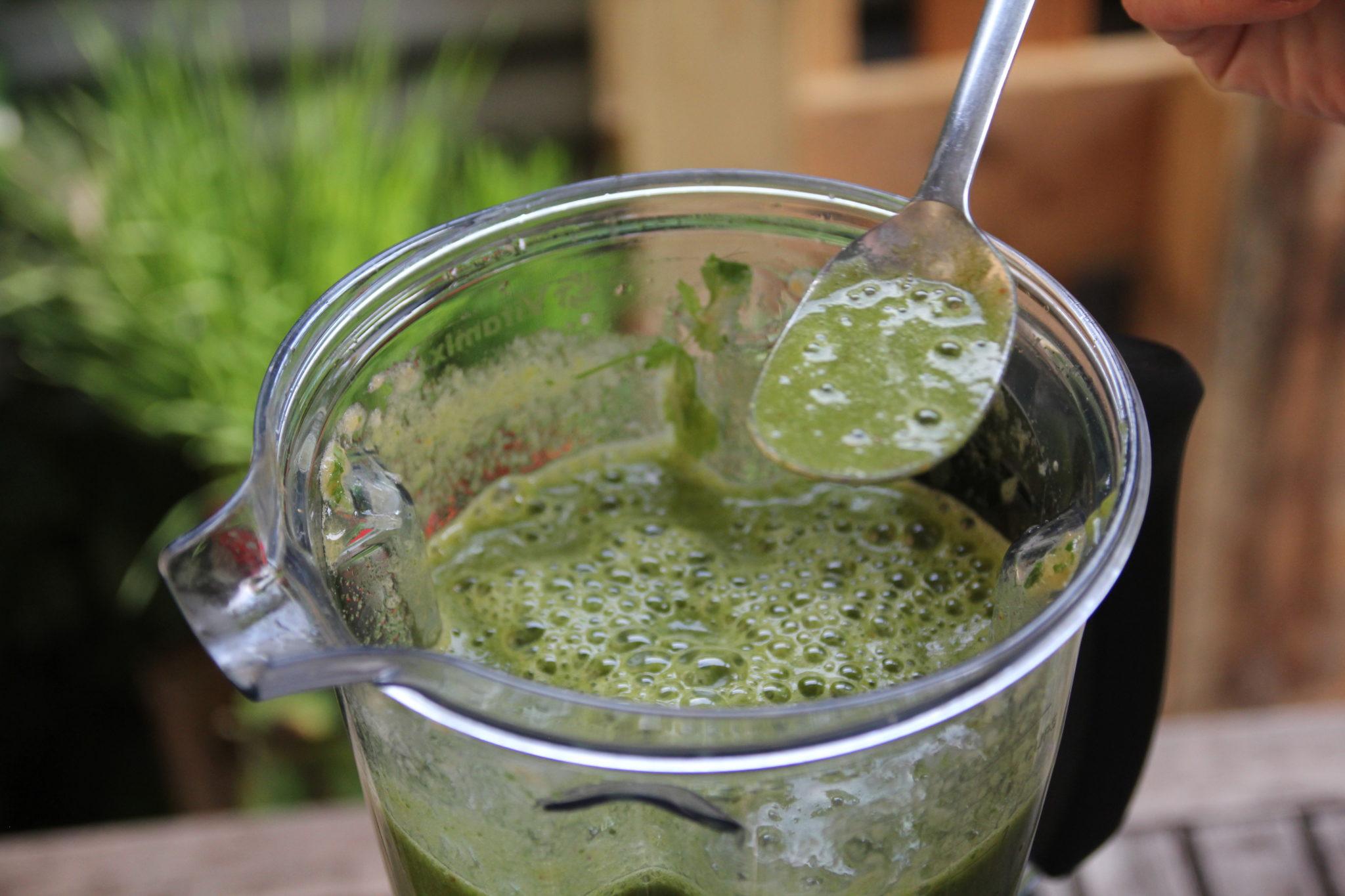 Im Grüne Smoothie Einsteiger Workshop probieren wir verschiedene Rezepte aus